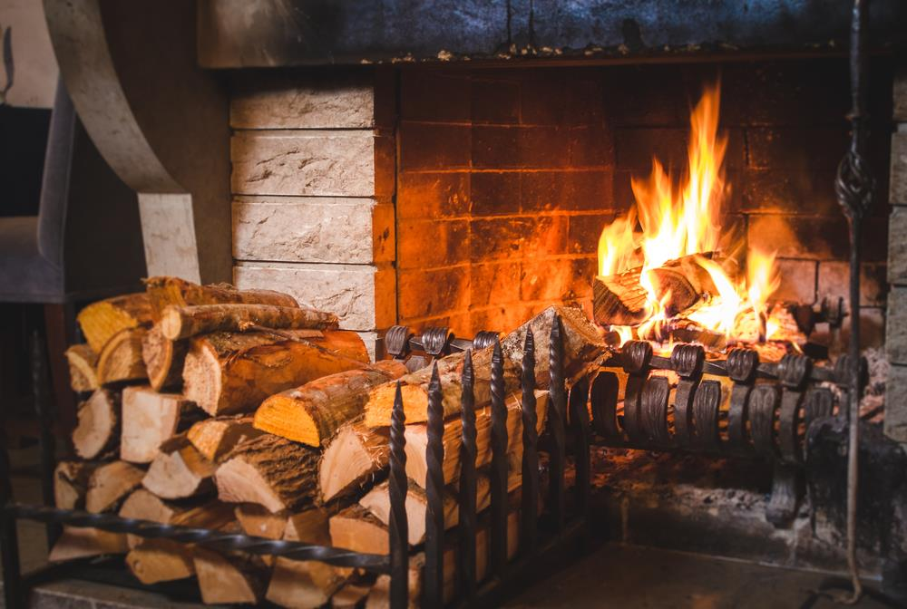 What Is The Best Way To Choose Firewood For Your Home?